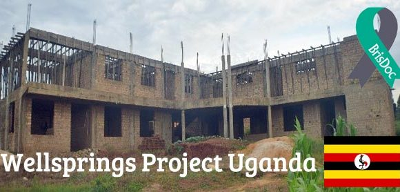An update on the progress of Wellsprings Hospital in Uganda